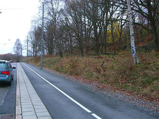 Teknisk slänt mellan Ekedalsgatan och Slottsskogens natur.