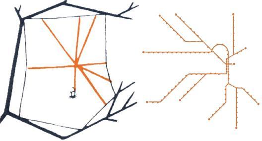 Spindelnät och tunnelbanenät